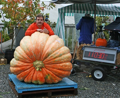Ckagit Valley Christianson's Nursery Giant Pumpkin Weigh-off winner