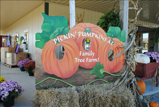 The 10 best pumpkin patches in illinois 2016.