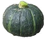 Kabocka pumpkin